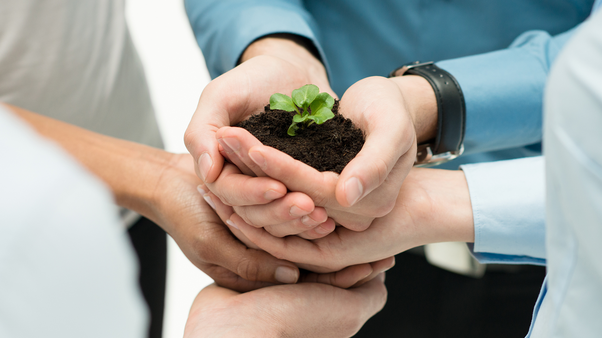 Growing as a Start-up Leasing Partner